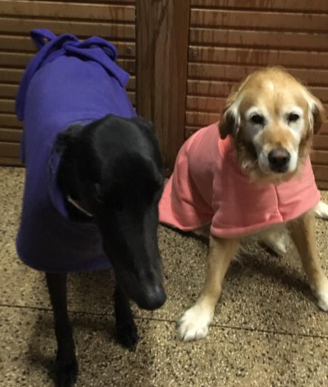 Skye and Gus