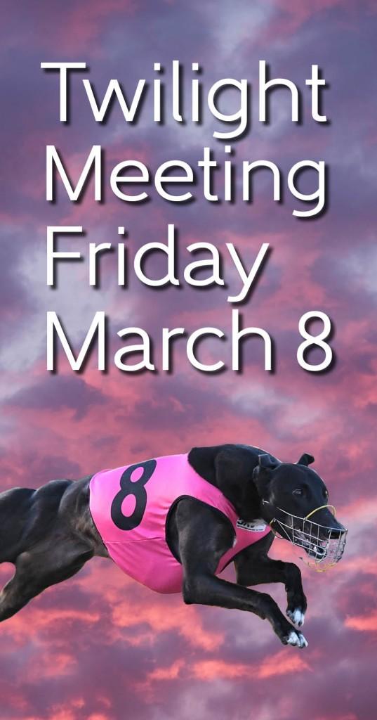 Twilight Meeting 8-3-19